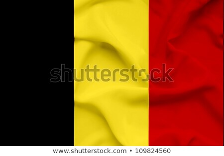 Textured Grunge Waving Flag of Belgium Stock photo © nazlisart