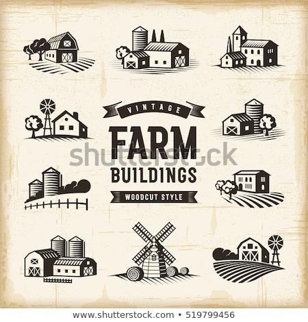 Szélmalom farm illusztráció épület tájkép háttér Stock fotó © colematt