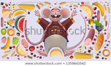 жира мыши крыса Лапы китайский календаря Сток-фото © orensila