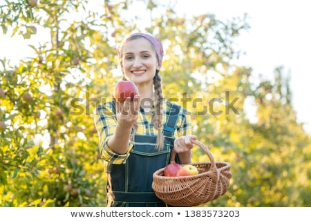 femme · fruits · verger · pomme · caméra - photo stock © kzenon
