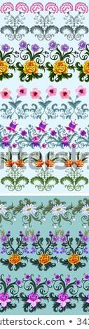 гвоздика · цветок · белый · Top · мнение - Сток-фото © CatchyImages