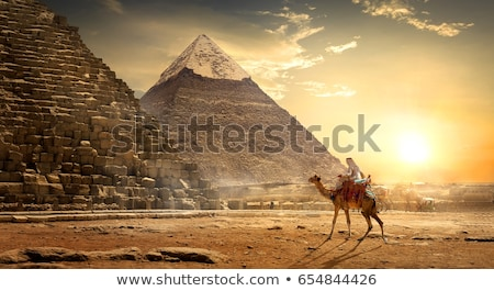 ピラミッド · 砂漠 · ラクダ · 空 · 太陽 · 日没 - ストックフォト © givaga