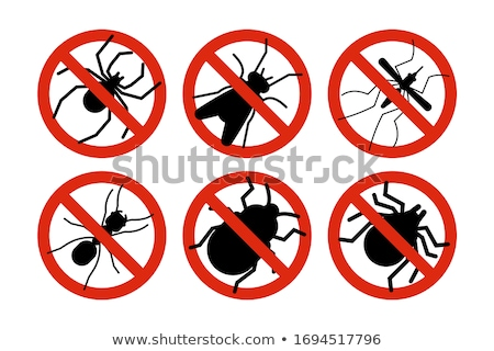 Mosquito Danger Stock photo © Lightsource
