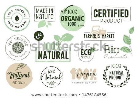 Stockfoto: Natuurlijke · product · veganistisch · voedsel · sticker · ingesteld