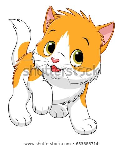 funny spotted cat cartoon animal character Stock photo © izakowski