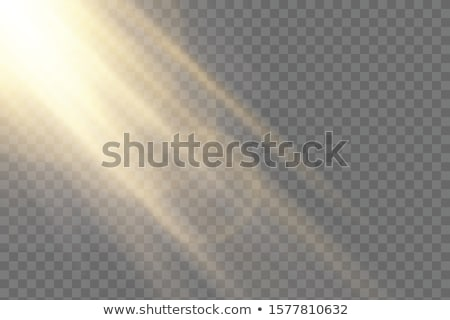 Sunlight special lens flash light effect on transparent background. Effect of blurring light. Vector Stock photo © olehsvetiukha