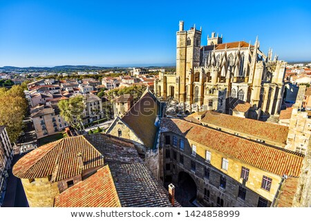 Narbonne Cathedral, France Stock photo © borisb17