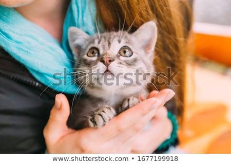 Little girl holding kitten on blurred background outdoors Stock photo © dashapetrenko