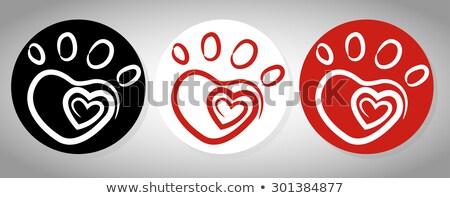 Vector kleurrijk hond voetafdruk Rood hart Stockfoto © freesoulproduction