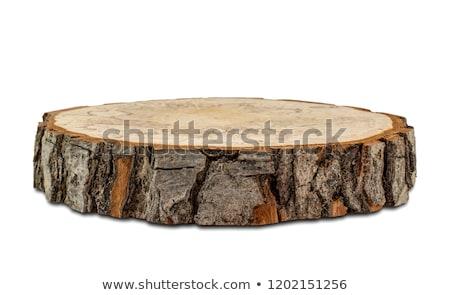Alder trunk wood texture Stock photo © rmarinello