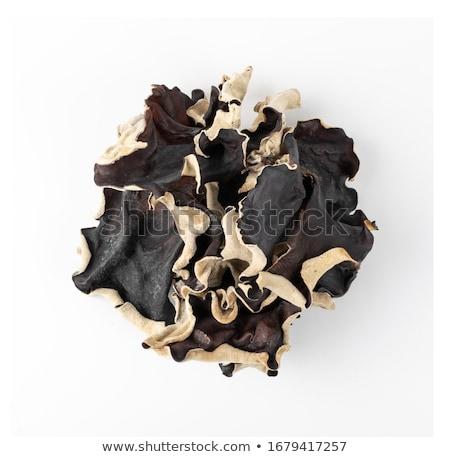 耳 · 菌 · 木材 · 中国語 · ボード - ストックフォト © zkruger