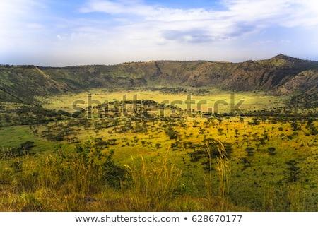 Királynő park Uganda természetes díszlet Afrika Stock fotó © prill