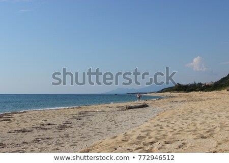 Untamed Greek coast Stock photo © ivonnewierink