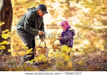 Idős gyűlés gombák növények kosár vidék Stock fotó © photography33