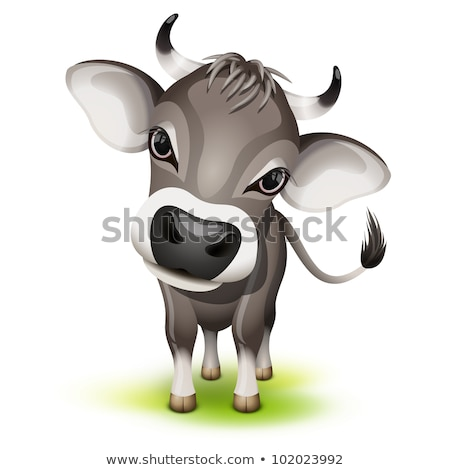 Little swiss cow Stock photo © tilo