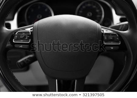 Carro volante instrumento painel couro soar Foto stock © mtoome