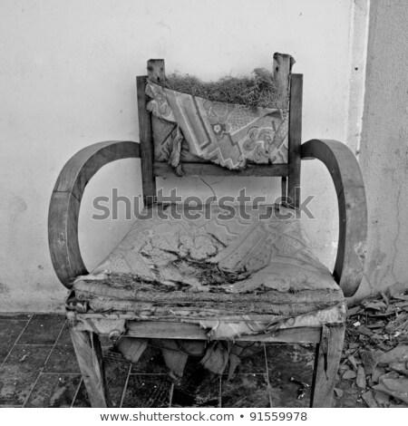 torn armchair and broken glass Stock photo © sirylok