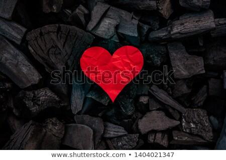 сердце белый назад землю аннотация дизайна Сток-фото © Sniperz