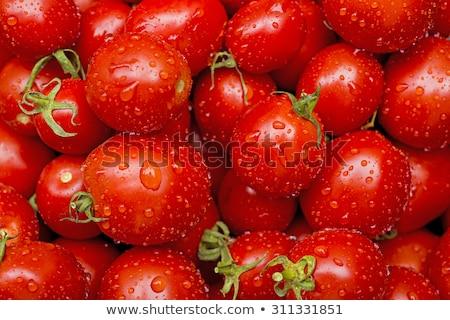 Wet Fresh Tomatoes Stock photo © Kuzeytac