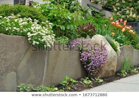 mokro · mur · budowy · kamień · cegły · architektury - zdjęcia stock © kuzeytac