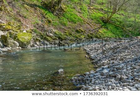 idyllic spring scenery in Hohenlohe Stock photo © prill