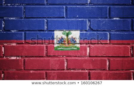 フラグ ハイチ レンガの壁 描いた グランジ テクスチャ ストックフォト © creisinger