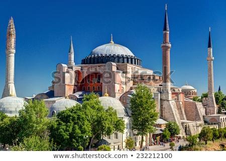 Istanbul een Turkije boom gebouw bouw Stockfoto © wjarek