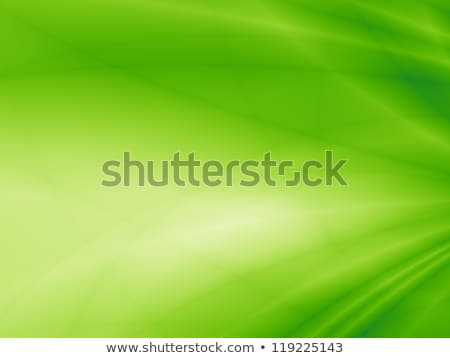 floral concept bright green background stock photo © jaggat_rashidi
