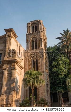 facade of old historic house with palm tree stock photo © meinzahn