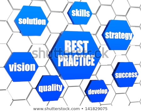 best practice and business concept words in blue hexagons Stock photo © marinini
