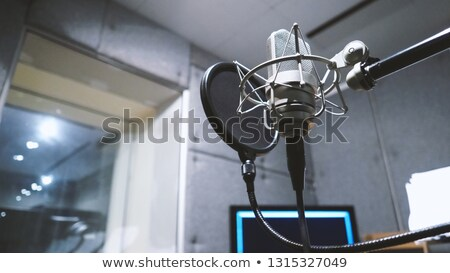 professional condenser studio microphone stock photo © stockyimages
