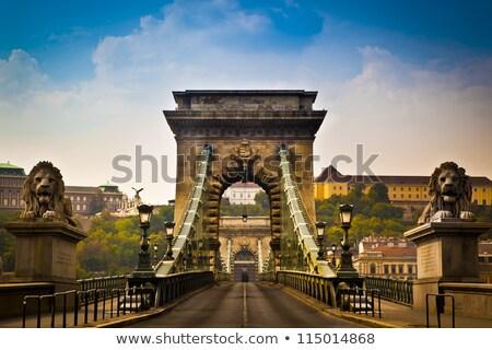 Lánc híd gyönyörű dekoratív felfüggesztés Budapest Stock fotó © bloodua