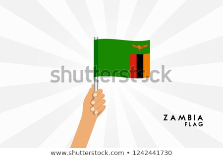 Zambia Small Flag on a Map Background. Stock photo © tashatuvango