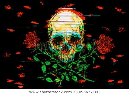 Skulls and skull rose shape Stock photo © 13UG13th