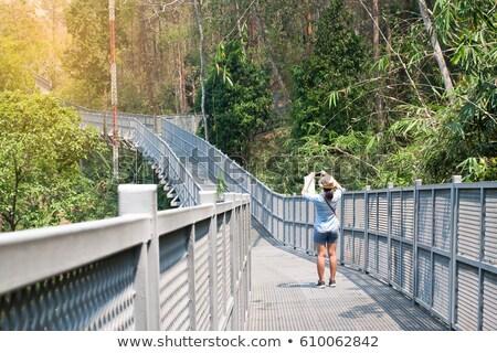 mulher · caminhada · jardim · botânico · mulher · jovem · câmera - foto stock © cwzahner