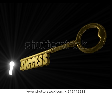 Key with word success pointed to the illuminated key hole concep Stock photo © tuulijumala