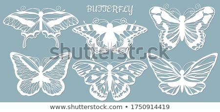 蝶 ステンシル ベクトル 実例 自然 デザイン ストックフォト © Mr_Vector