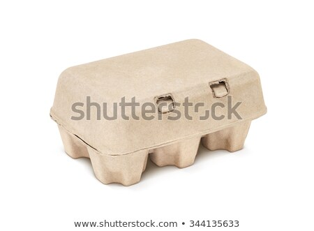 Paper Pulp Protective Packaging Stock photo © dezign56