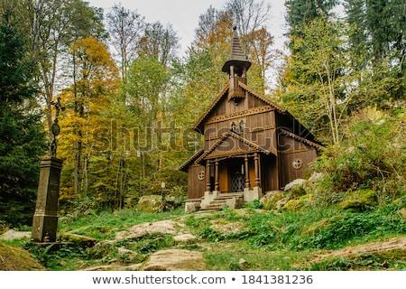 Malutki kaplica mały biały bujny zielone Zdjęcia stock © LAMeeks