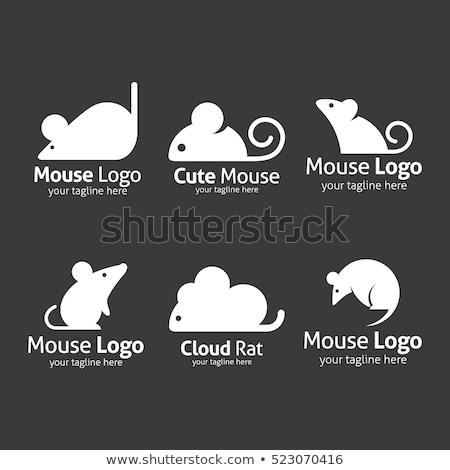 Bruin muis icon ontwerp achtergrond dieren Stockfoto © djdarkflower