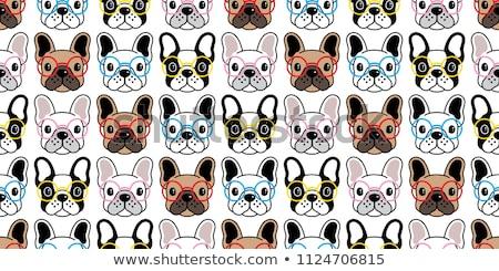 French Bulldog in glasses  Stock photo © OleksandrO
