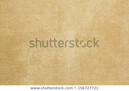 Pale Beige Texture of Sandstone Background. Stock photo © tashatuvango