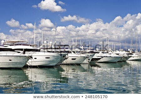 Row of luxury yachts mooring in a harbour Stock photo © artjazz