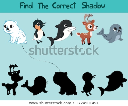 Kids puzzle - match the shadow to the cute bear Stock photo © adrian_n