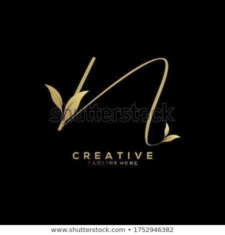 Design de logotipo florescer decoração abstrato retro Foto stock © SArts