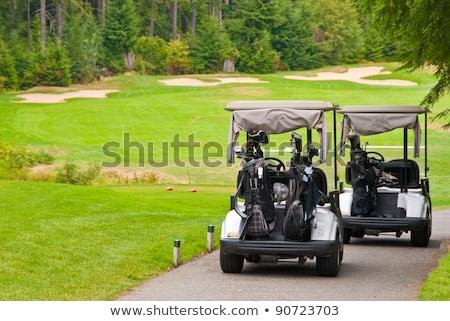 Two golf carts on the cart path Stock photo © njnightsky