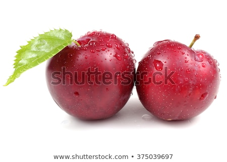 two wet plums Stock photo © Digifoodstock