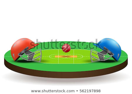 Cricket veld lay-out direct top Stockfoto © albund
