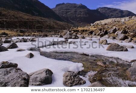 Gyönyörű alpesi tájkép fantasztikus nap friss Stock fotó © Leonidtit