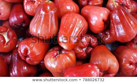 Viasz almák rózsa fehér gyümölcs Stock fotó © vinodpillai